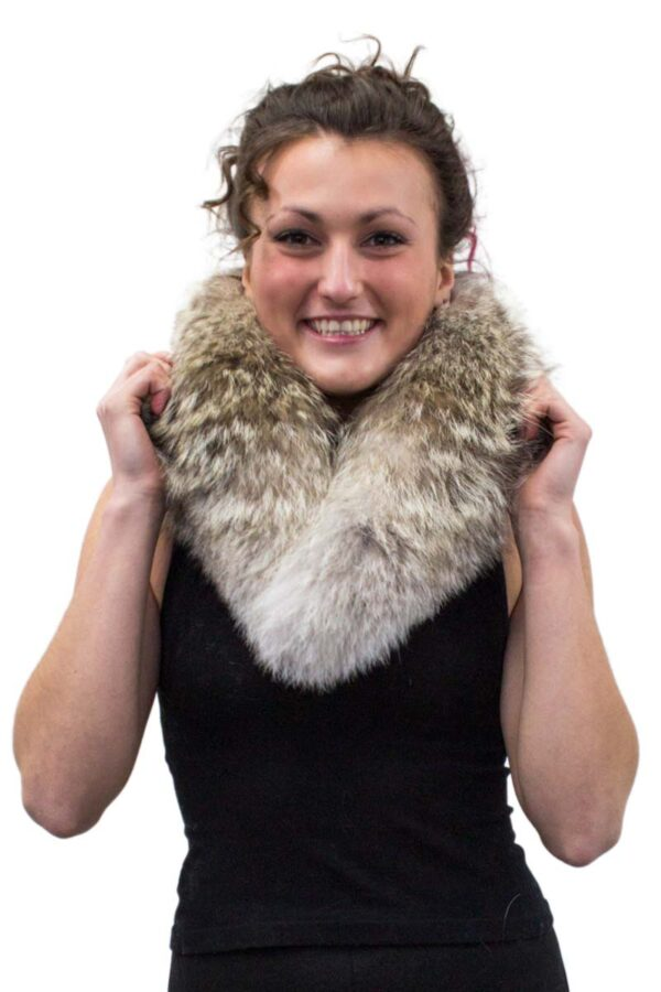 Coyote Collar with Clips